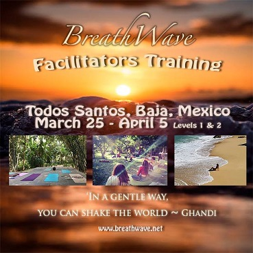 Baja Breath Training, Todos Santos